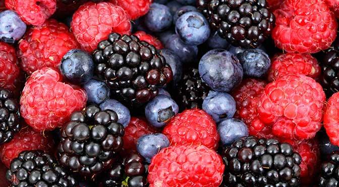 Crema de nuez y frutos rojos (by Samurái de ensaladas)